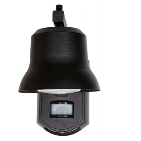 It's Exciting Lighting Outdoor Black Porch Light with Motion Detector