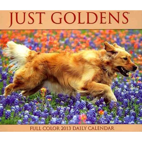 Just Goldens Full Color Daily Calendar