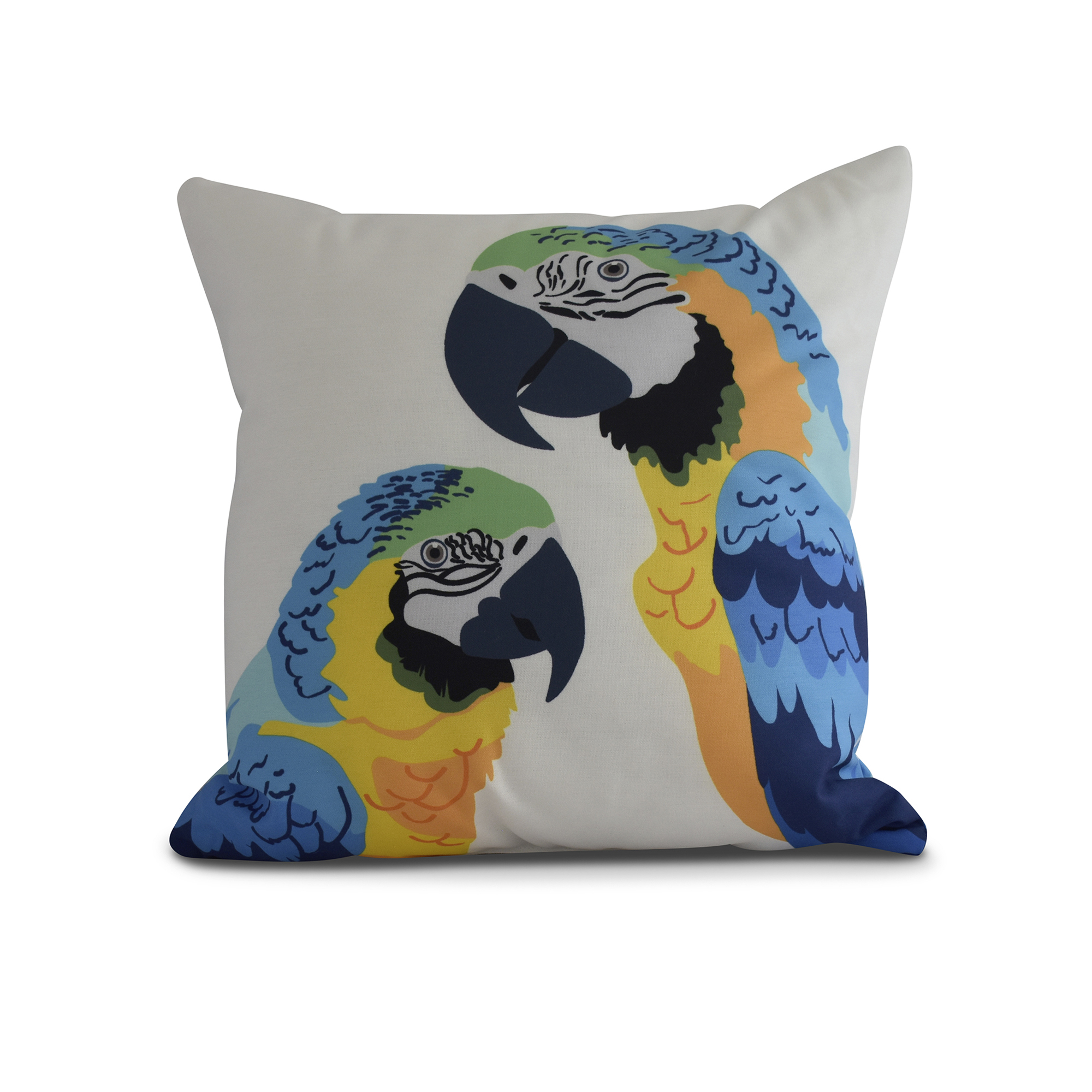 Simply Daisy, 16 x 16Inch, Macaw Close Up, Animal Print Pillow, Mid Blue