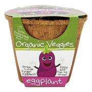 DuneCraft - Organic Veggie Pot Eggplant
