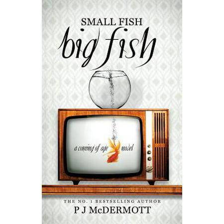 Small Fish Big Fish : A Coming of Age Novel