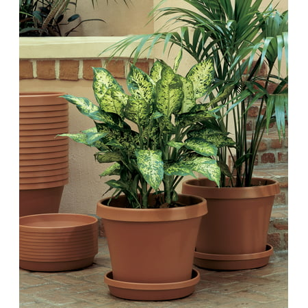 Urn Weathered Terra Cotta (Bloem Terra Pot Planter 10
