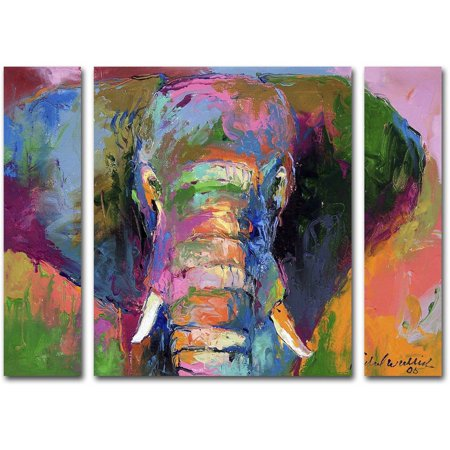 Richard wallich elephant 2 multi panel art set for Art cuisine evolution 10 piece cooking set