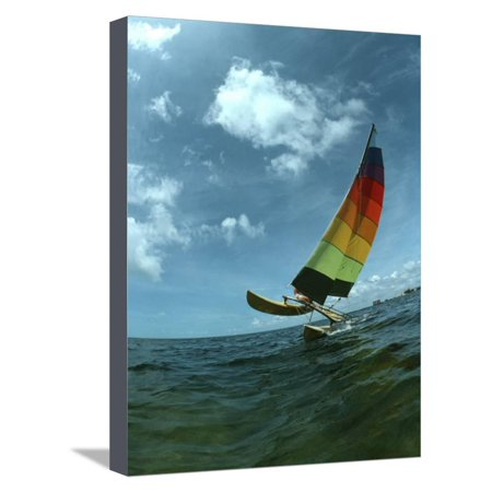 Catamaran Sailing, Biscayne Bay, Miami, FL Stretched Canvas Print Wall Art By Pat -