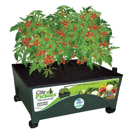 Emsco City Pickers Indoor Patio Grow Box Garden