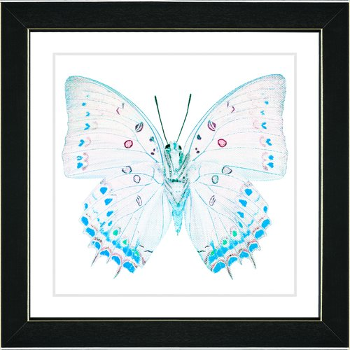 Studio Works Modern ''White Butterfly'' by Zhee Singer Framed Graphic Art