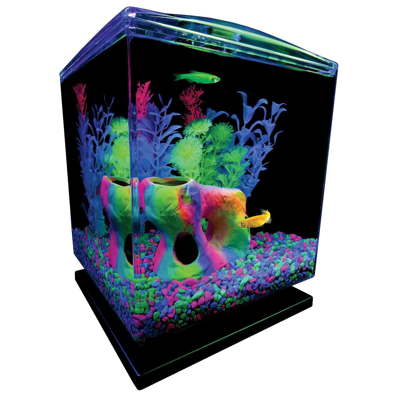 Glofish 1 5 Gallon Aquarium Starter Kit W Hood Leds Whisper Filter