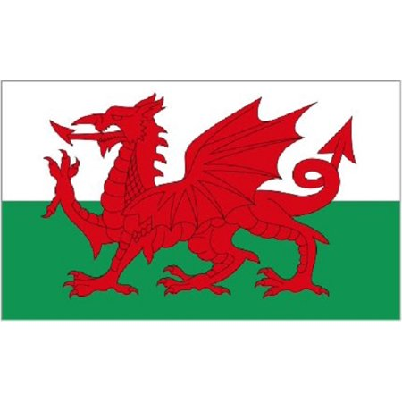3x5 Wales Flag NYLON Welsh Dragon Indoor Outdoor National Country Banner