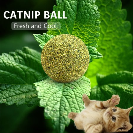 5PCS Catnip Ball Toy Cat Mint Ball Natural Catnip Cleaning Playing Chew Claw Toy Pet Supplies ()