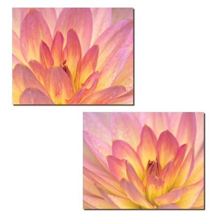 China Doll Dahlia | Gorgeous Blooming Pink and Yellow Dahlias Photograph Prints; Two 14x11in Poster (Gorgeous Chinese Antique)