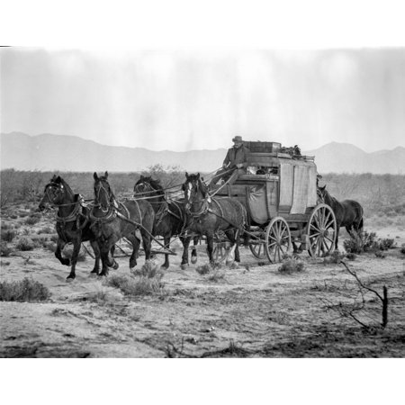 Hombre Group Of People Searching In Black And White Photo Print