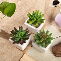 Efavormart Set of 3 | 4 Assorted Faux Succulent Mini Green Plant In White Ceramic Pot
