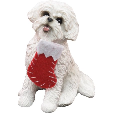 Sandicast Sitting Bichon Frise with Stocking Christmas Dog - Bichon Frise Yorkshire Terrier
