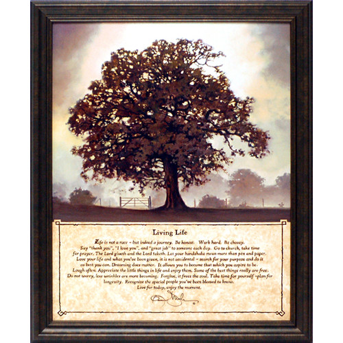 Artistic Reflections Living Life by Mohr, Bonnie Framed Graphic Art