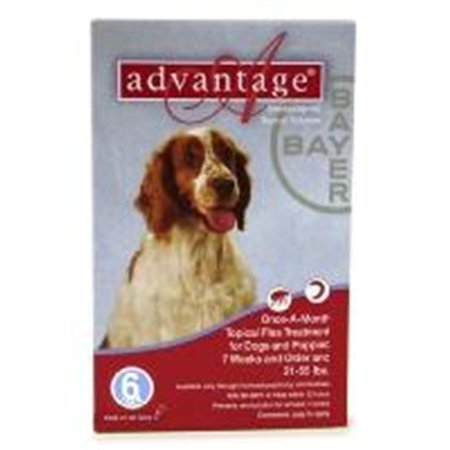 Bayer ADVANTAGE6-RED Advantage 6 Pack Dog 21-55 Lbs. - Red