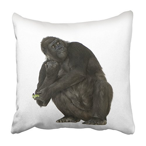 Arhome Black Ape Young Silverback Gorilla In Front Of White Monkey Animal Arm Baby Pillowcase Cushion Cover 20x20 Inch Walmart Com Walmart Com
