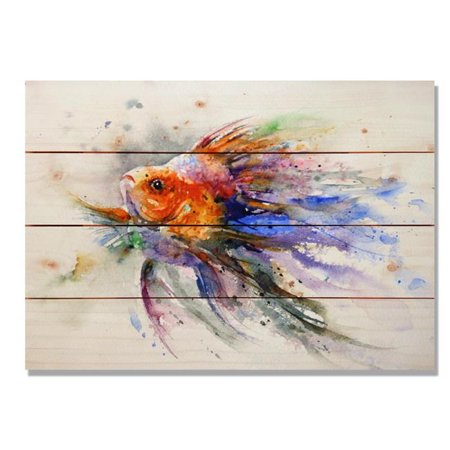 Day Dream HQ DCGF2014 20 x 14 in. Goldfish Wall Art - image 1 de 1