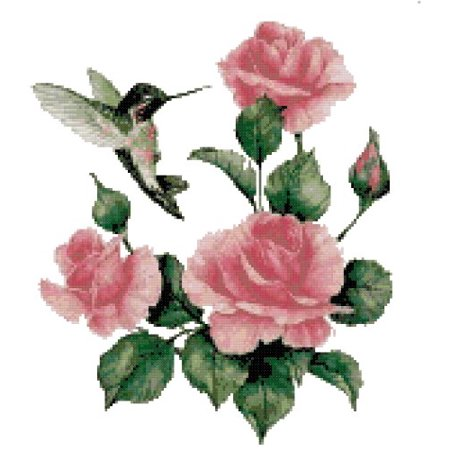 Hummingbird and Roses Counted Cross Stitch - Halloween Cross Stitch Patterns Online