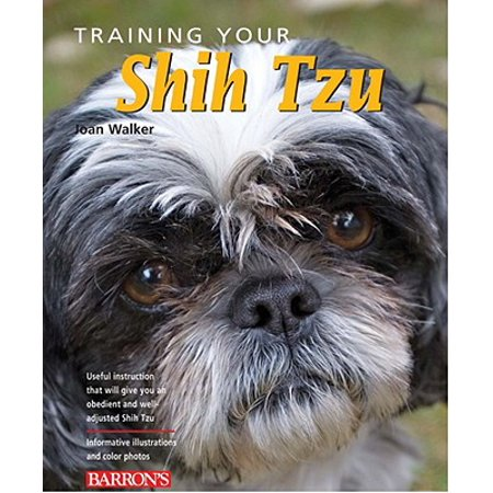 Training Your Shih Tzu (Training Shih Tzu Puppies Not To Bite)
