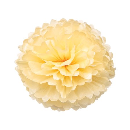 Tissue Paper Pom Pom (10-Inch, Cream) - For Baby Showers, Nurseries, and Parties - Hanging Paper Flower Decorations