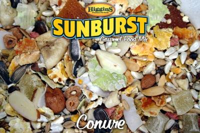 Higgins Sunburst Conure Gourmet Bird Food Mix, 3 lb by HIGGINS PREMIUM PET FOODS