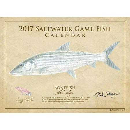 Saltwater fish wall calendar 2017 hunting fishing by for Fishing calendar 2017