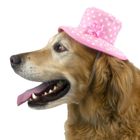 Vibrant Life Bucket Dog Hat, Pink Polka Dot, Medium/Large