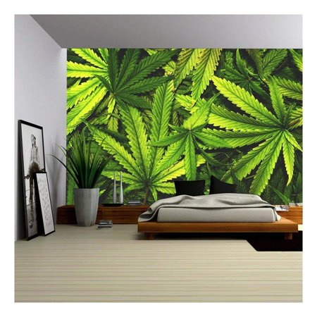 Mural Style Wallpaper Border (wall26 - Cannabis Texture Marijuana Leaf Pile Background with Flat Vintage Style - Removable Wall Mural | Self-Adhesive Large Wallpaper - 66x96 inches)