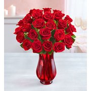 1800Flowers Two Dozen Red Roses Flower Bouquet with Red Vase (24 Flowers)
