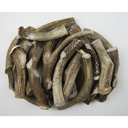 Antler Man Premium JUMBO Antler Pieces - Dog Chews - Sold By The Pound: 1 Pound = 2 Pieces