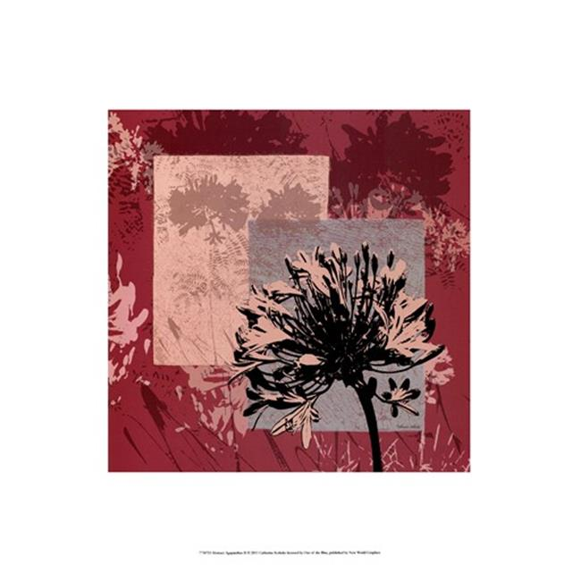 Old World Prints Hand Colored OWP77307D Abstract Agapanthus II Poster by Catherine Kohnke (13.00 x 19.00) - image 1 of 1