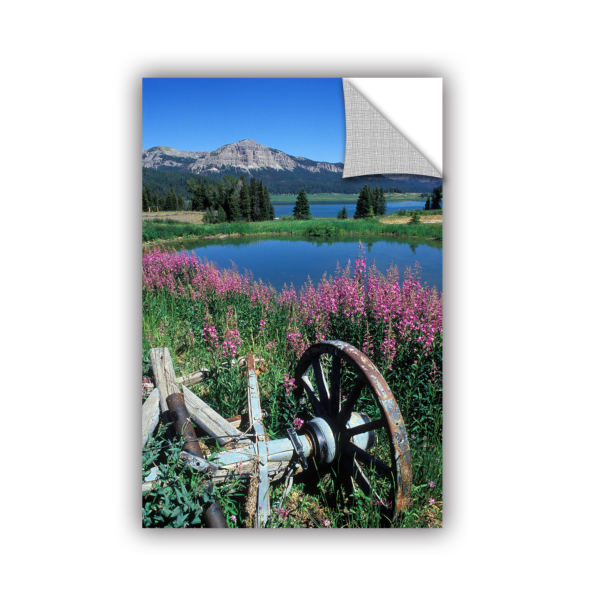 'Old Wheel and Brooks Lake' Removable Wall Art Mural