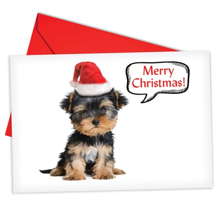'B6690AXSB Santa Pups Christmas Cards' Box Set of 12 Hilarious Merry Christmas Notecards with Envelopes by NobleWorks ()
