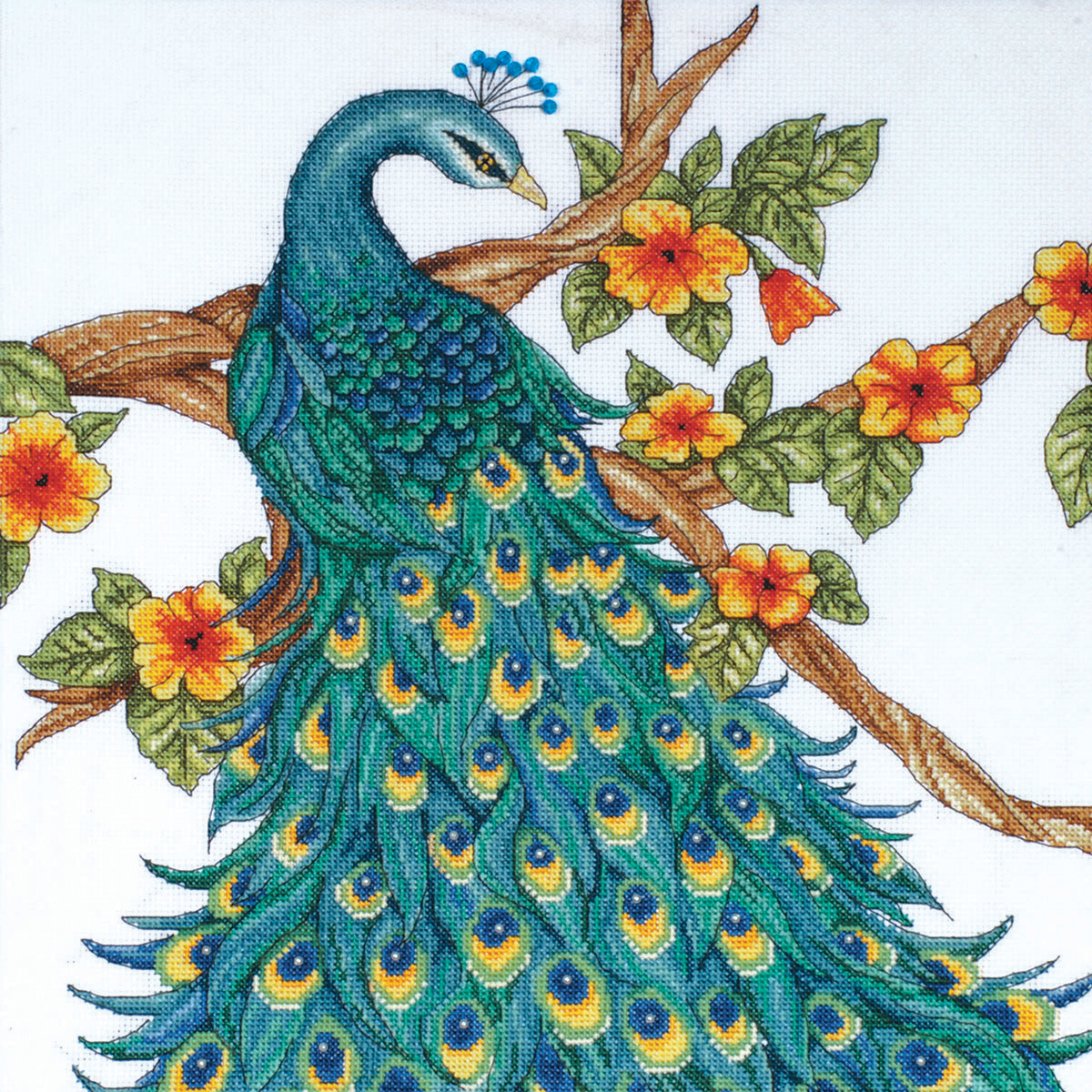 "Peacock Counted Cross Stitch Kit, 14"" x 14"", 14-Count"