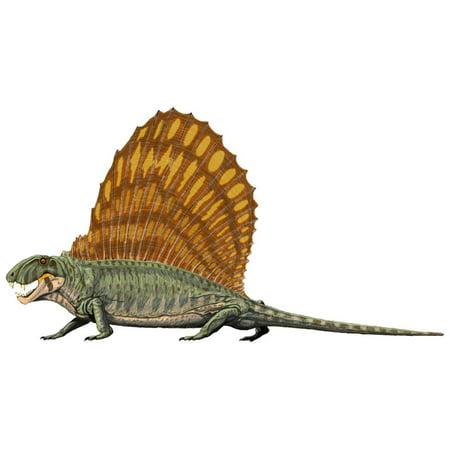 Laminated Poster Dimetrodon Dinosaur Reptile Dragon Lizard Cool Poster Print 24 x 36