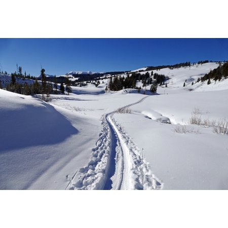 Canvas Print Landscape Snow Cross Country Skier Tracks Winter Stretched Canvas 10 x 14