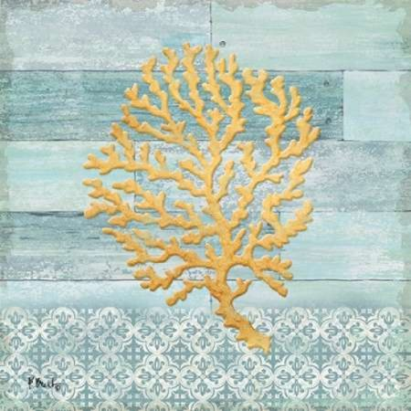 Clearwater Coral Ii Rolled Canvas Art   Paul Brent  24 X 24