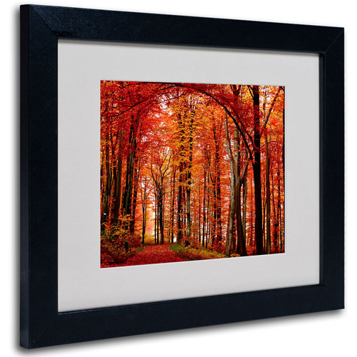 Trademark Art 'The Red Way' Framed Matted Art by Philippe Sainte-Laudy