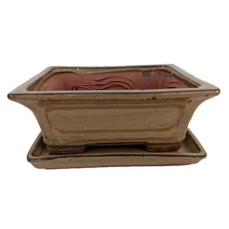 "Pro Bonsai Pot/Saucer Pre-Wired - Mustard/Rect/Flare-6 3/8""x4 3/4""x2 5/8"""