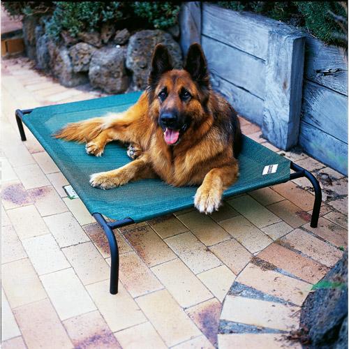 Coolaroo Elevated Pet Bed, Large, Brunswick Green