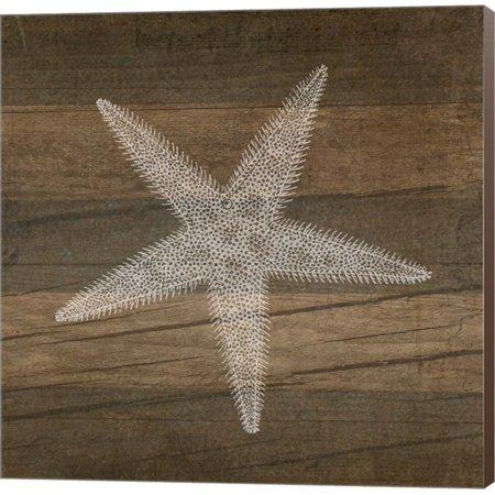 Rustic Starfish - White by Tammy Apple, Canvas Wall Art - Starfish Wall Art