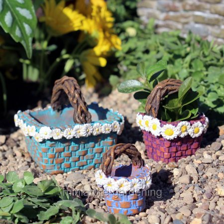 wholesale fairy gardens daisy baskets 3 piece set for miniature garden fairy garden. Black Bedroom Furniture Sets. Home Design Ideas