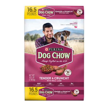 Purina Dog Chow Healthy Morsels Dog Food Bonus Size 18 lb.