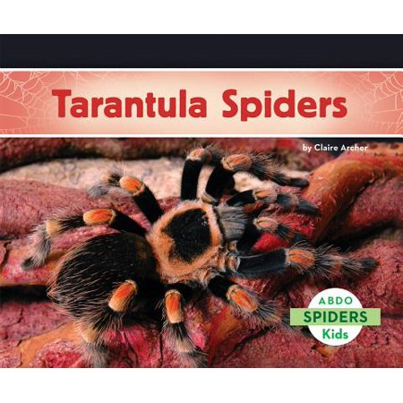 Tarantula Spiders (Spider Tarantula)