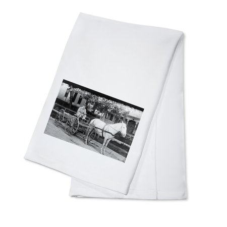 Horse pulling Delivery Wagon Photograph (100% Cotton Kitchen