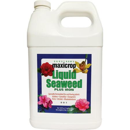 Maxicrop Liquid Seaweed Plus Iron  0.1 - 0 - 1 MaxiCrop Plus Iron 2% (Liquid Seaweed)