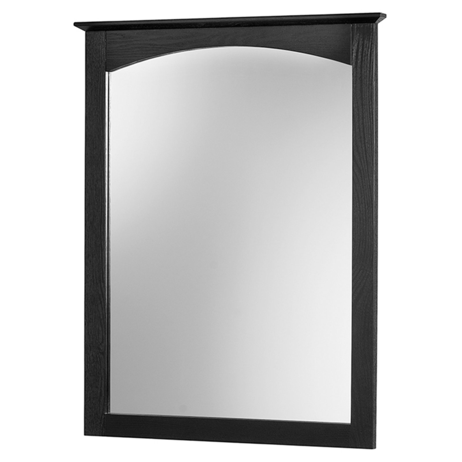 Foremost Columbia 25 in. Bathroom Mirror - Black