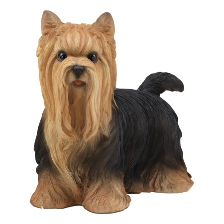 Ebros Realistic Long Haired Yorkie Statue 11.5