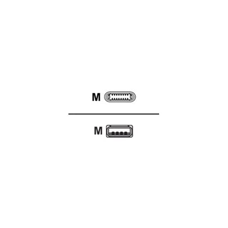 V7 1m Lightning to USB 2 0 Cable, Black