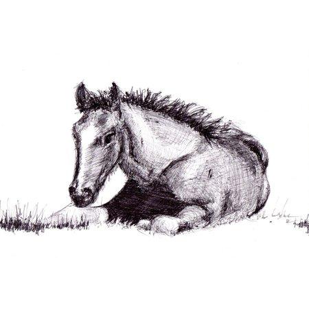 - Peel-n-Stick Poster of Art Drawing Horse Artwork Pen Poster 24x16 Adhesive Sticker Poster Print